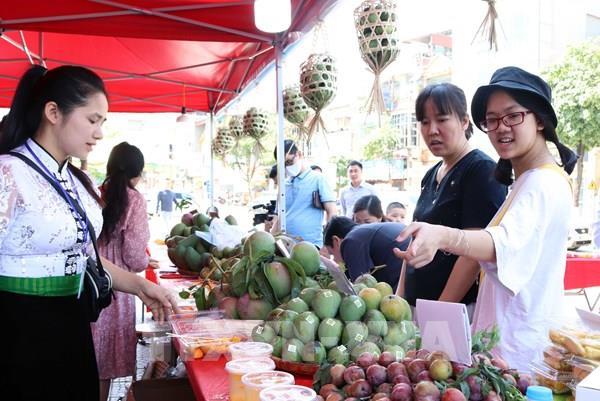 Quảng bá sản phẩm xoài và nông sản an toàn Yên Châu (Sơn La)