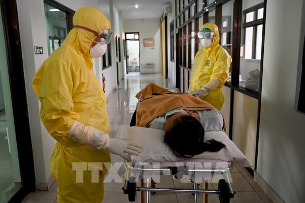 Cập nhật COVID-19 ngày 29/5: Thế giới hơn 360.000 người chết vì COVID, Việt Nam 0 ca mới