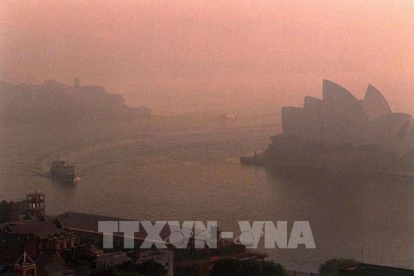 Khí thải nhà kính có thể giảm tới 7% nhờ phong tỏa do dịch COVID-19