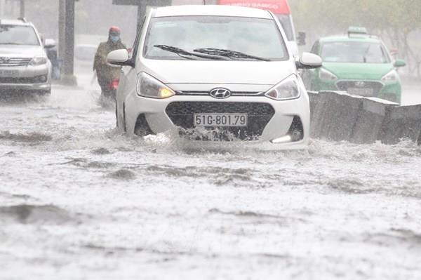 TP Hồ Chí Minh: Mưa như trút nước kèm giông lốc, cây ngã đè người đi đường