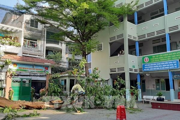 Bí thư Thành ủy TP Hồ Chí Minh Nguyễn Thiện Nhân viếng học sinh bị nạn do cây đổ