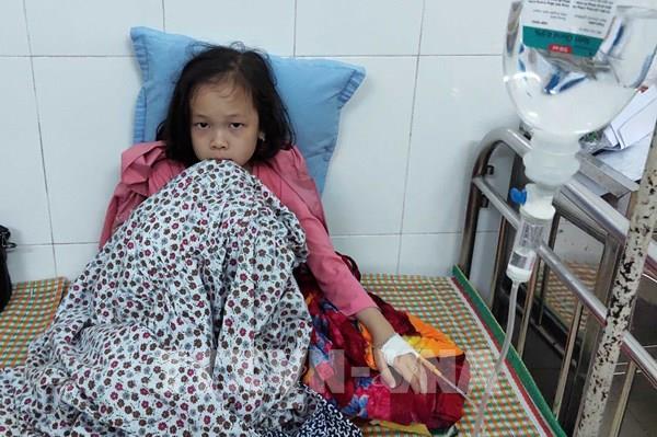 Học sinh bị ngộ độc thực phẩm ở Cao Bằng: Đình chỉ hoạt động nhà hàng cung cấp suất ăn