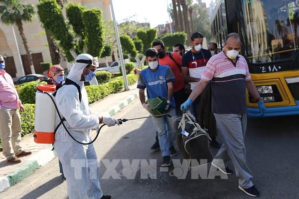 Ai Cập có số ca nhiễm mới COVID theo ngày cao nhất từ trước đến nay