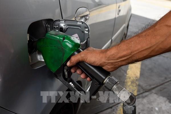 Giá dầu châu Á đi xuống do OPEC dự báo nhu cầu nhiên liệu toàn cầu yếu hơn
