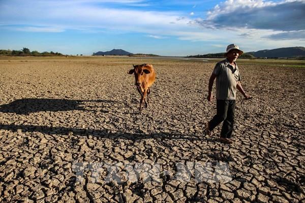 Dự báo thời tiết 10 ngày tới: Hạn hán ở Trung Bộ có xu hướng lan rộng