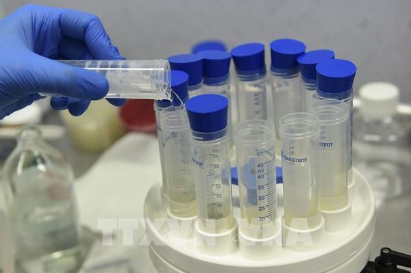EU sẽ chi 2,4 tỷ euro để mua các loại vaccine hứa hẹn phòng COVID-19