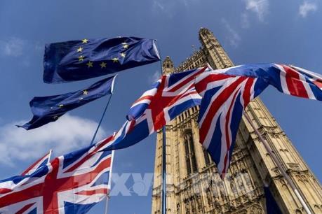 """Vương quốc Anh: Brexit """"cứng"""" hay COVID-19 đáng lo ngại hơn?"""