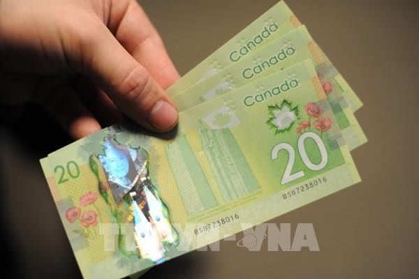 Đồng nội tệ của Canada lên giá mạnh so với đồng USD
