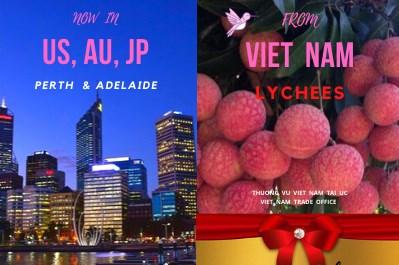 Vải U hồng Việt Nam chuẩn bị cập cảng Australia