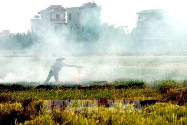 Đốt rơm rạ làm gia tăng ô nhiễm không khí về đêm