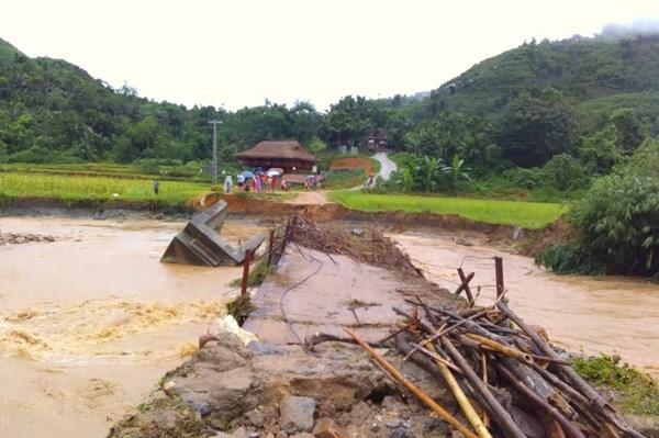 Mưa lũ làm sập cầu, nhiều cánh đồng bị ngập sâu tại Lào Cai