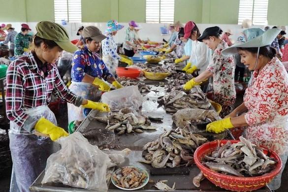 Bộ trưởng Nguyễn Chí Dũng: Các giải pháp hỗ trợ chưa thực sự như mong đợi