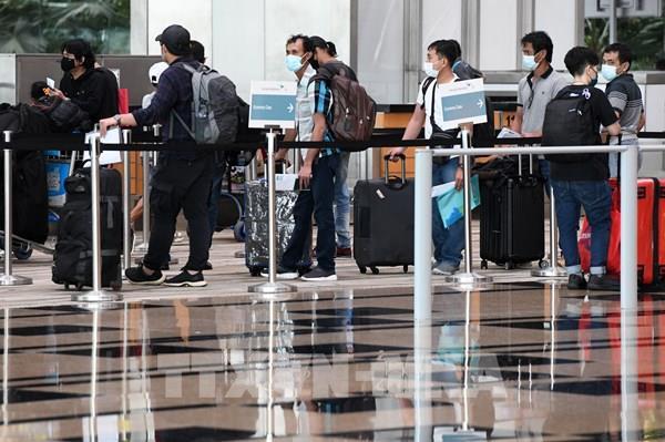 Singapore Airlines sẽ tăng tần suất vận hành trong tháng 8/2020