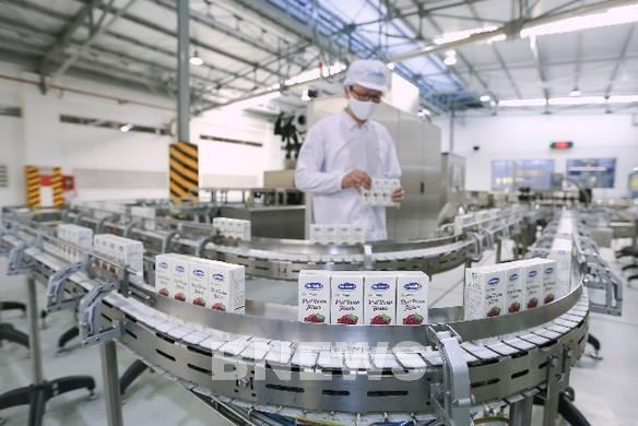 Vinamilk được cấp phép xuất khẩu sữa vào Liên minh kinh tế Á Âu