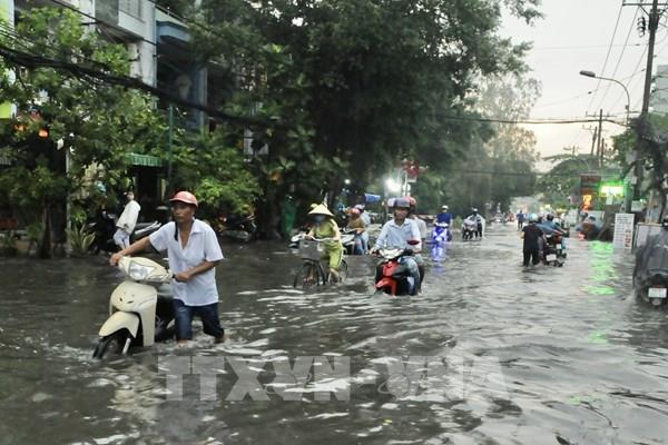 """Nan giải chống ngập tại Tp. Hồ Chí Minh - Bài 1: Nhìn lại """"chặng đường"""" chống ngập"""