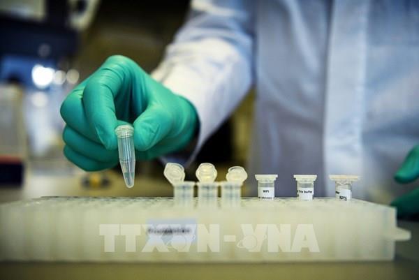 EIB hỗ trợ CureVac phát triển vaccine ngừa COVID-19