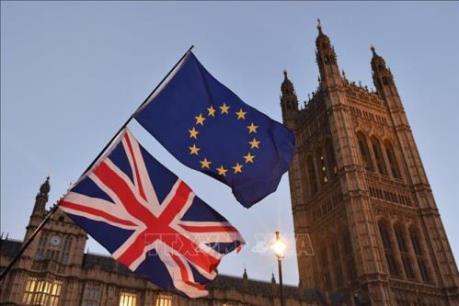 Mối liên hệ giữa EU, Brexit và COVID-19 thời gian tới