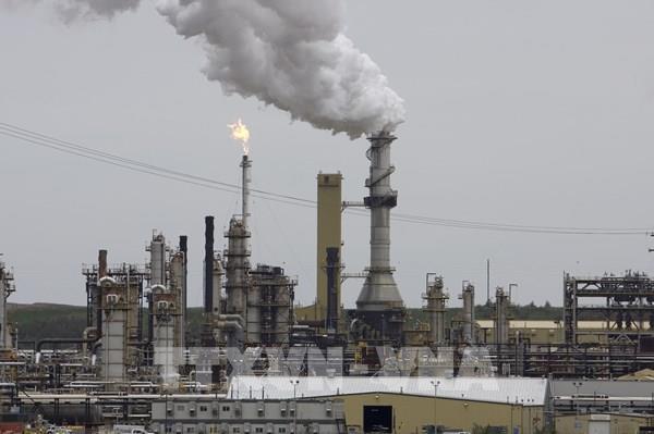 Ngành dầu khí Canada cắt giảm mạnh nhân lực