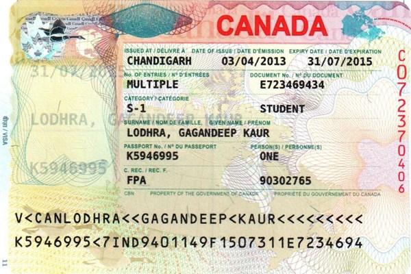 """Chương trình thị thực của Canada """"hút"""" lao động nước ngoài vào mảng công nghệ"""