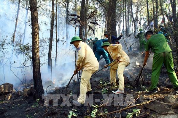 Nghệ An đã kiểm soát cháy rừng, không để cháy lan đến nhà dân