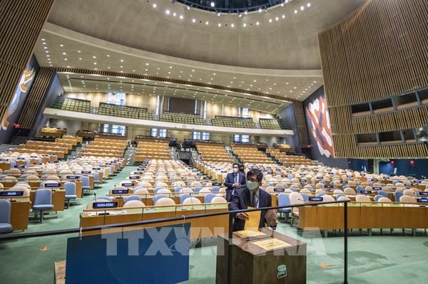 Việt Nam khẳng định vai trò tích cực, chủ động trong Hội đồng Bảo an LHQ