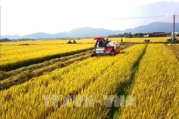 Cơ khí nông nghiệp: Việt Nam đang ở vị trí nào?