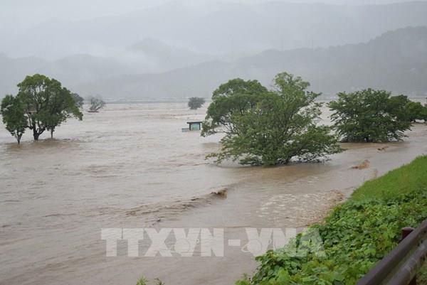 Hơn 76.000 cư dân miền Tây Nam Nhật Bản sơ tán do mưa lớn
