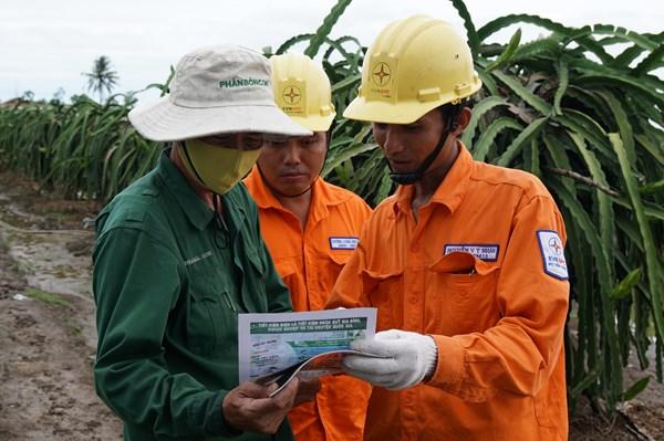 Báo động vi phạm an toàn lưới điện mùa mưa bão