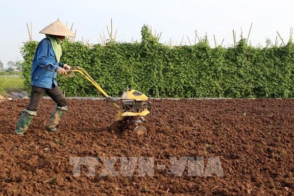 Thế khó trong cơ giới hóa sản xuất lúa các tỉnh phía Bắc