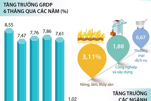 6 tháng năm 2020: GRDP TP Hồ Chí Minh tăng 1,02%
