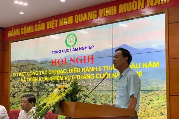 Thứ trưởng Hà Công Tuấn: Xuất khẩu lâm sản sẽ không thấp hơn 12 tỷ USD