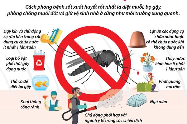 Các cách phòng chống sốt xuất huyết