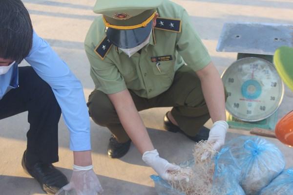 Xử phạt vận chuyển sản phẩm động vật không đảm bảo vệ sinh thú y