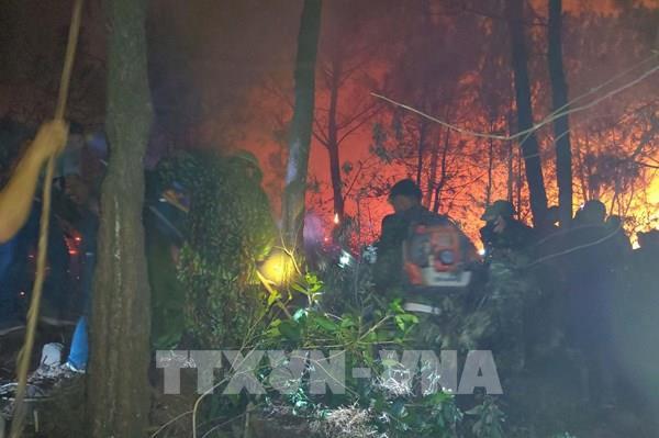Nghệ An khởi tố hình sự và xử lý hành chính 8 vụ cháy rừng