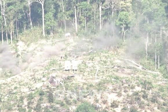 Kiến nghị xử lý trách nhiệm trong quản lý, bảo vệ rừng ở Gia Lai