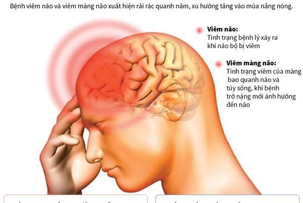 Phòng tránh bệnh viêm não và viêm màng não