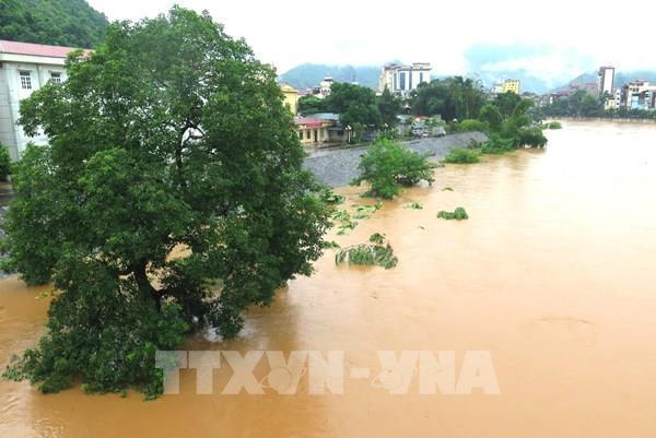 Mưa lũ gây ngập lụt nghiêm trọng ở Hà Giang