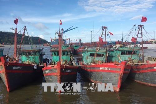 Vì sao ngư dân không mặn mà với Nghị định 17/2018/NĐ-CP?