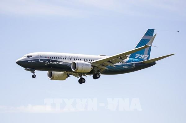 American Airlines dự định nối lại các chuyến bay dùng Boeing 737 MAX