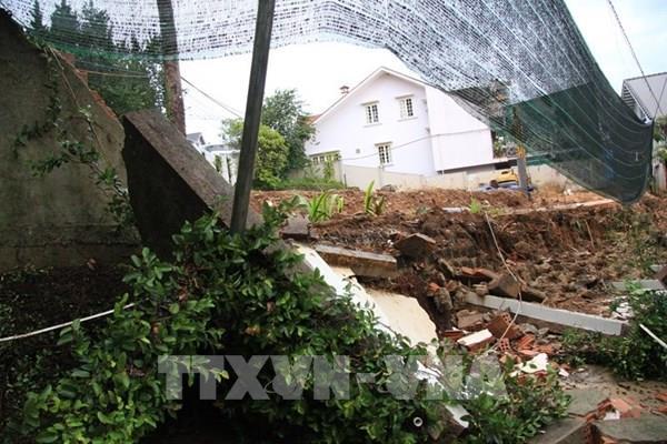 Đà Lạt: Thông lớn ngã đổ, sập ta-luy gây nguy hiểm cho người đi đường