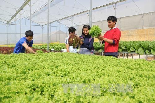 Nga sẵn sàng mở rộng hợp tác nông nghiệp với Việt Nam và ASEAN