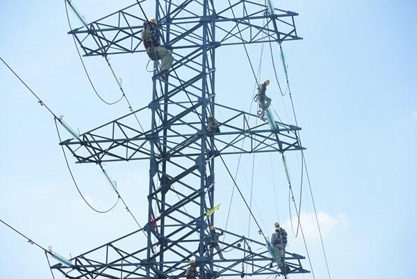 Đảm bảo an toàn lưới điện trước mùa mưa bão