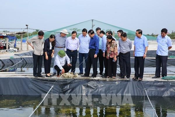 Bộ trưởng Nguyễn Xuân Cường: Ninh Bình xây dựng nền nông nghiệp đặc hữu