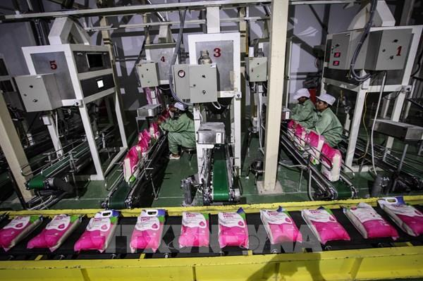 Thị trường gạo châu Á tuần qua: Giá gạo Việt Nam tăng do diễn biến dịch COVID-19