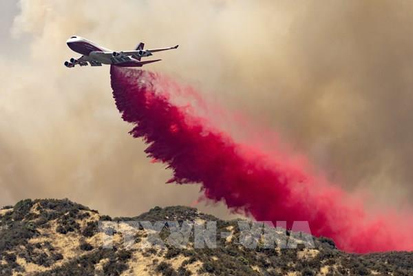 Hơn 1.300 lính cứu hoả khống chế cháy rừng tại California
