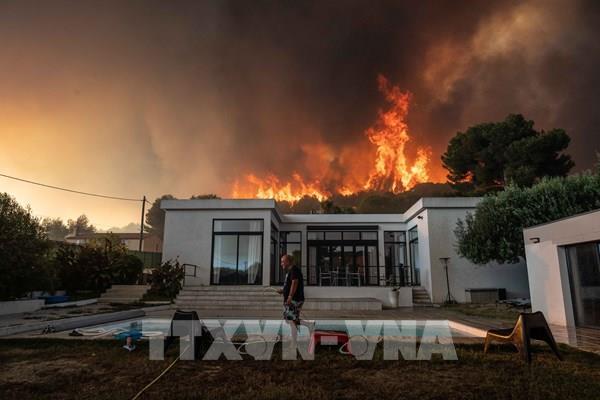 Cháy rừng tại Pháp khiến hàng nghìn người sơ tán