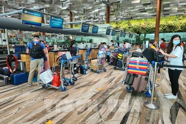 Dịch COVID-19: Đưa hơn 300công dân Việt Nam từSingapore về nước