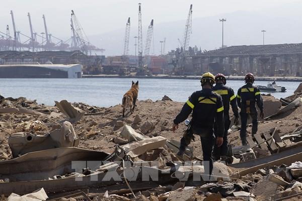 Vụ nổ tại Beirut: Lãnh đạo Liban đã được cảnh báo trước về nguy cơ xảy ra vụ nổ