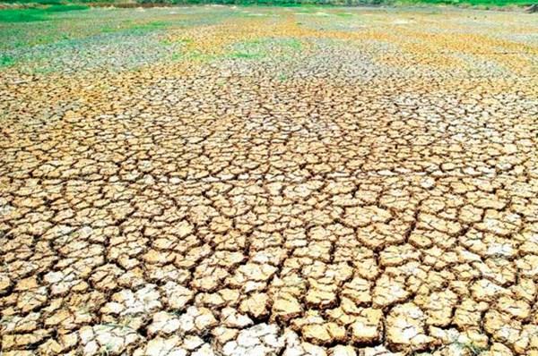 Hạn hán tàn phá hơn 40.000 ha lúa của Campuchia