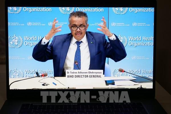 WTO, WHO và WIPO nhấn mạnh mối liên hệ giữa y tế công cộng, sở hữu trí tuệ và thương mại
